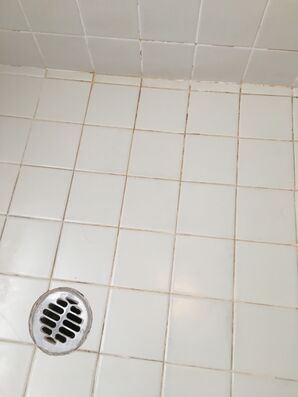 Shower Re-grout in Peoria, AZ (2)