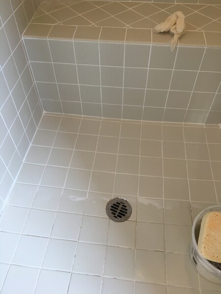 Shower Re-grout in Peoria, AZ (9)